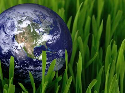 globe-in-grass